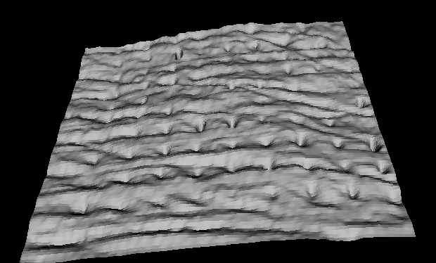 Microneedle Patch imaged with OCT Top Down view